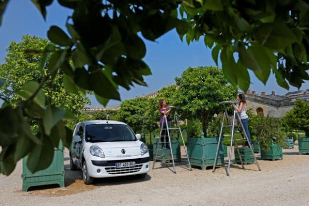 """Renault sprzedało 10 000 elektrycznych """"kangurów"""""""