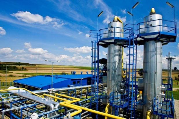 Handlowe podsumowanie roku gazowego 2013