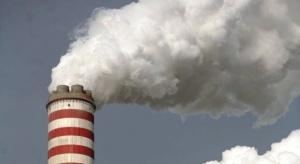 Szef Greenpeace: oczekujemy konkretnych celów redukcji CO2