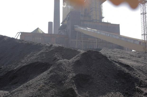 Szwedzka prasa: środowisko to dla Polski kwestia drugorzędna
