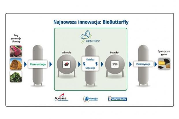 Michelin angażuje się w badania nad gumą z biomasy