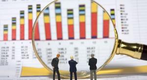 Goldman Sachs: optymistyczne prognozy dla PKB i złotego
