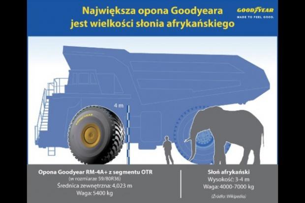 Opona Goodyear wielka jak.... słoń