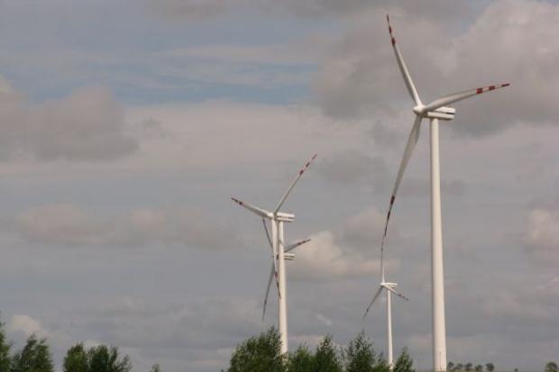 KGHM zawiesza projekty biomasowe, buduje farmę wiatrową