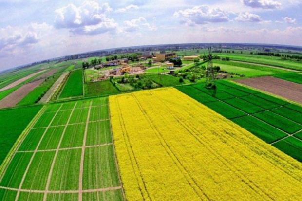 Większe techniczne zdolności importu gazu do Polski z kierunku zachodniego