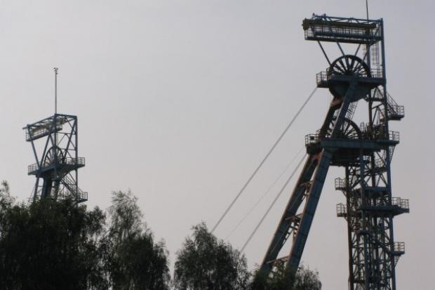 Kompania Węglowa: na kłopoty Mirosław Taras