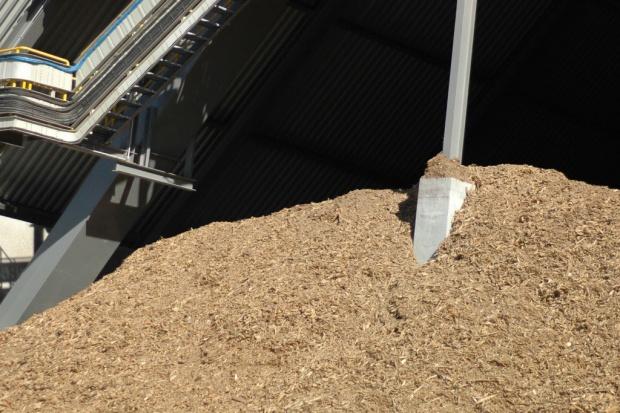 Ekolodzy skarżą się do KE na współspalanie biomasy z węglem