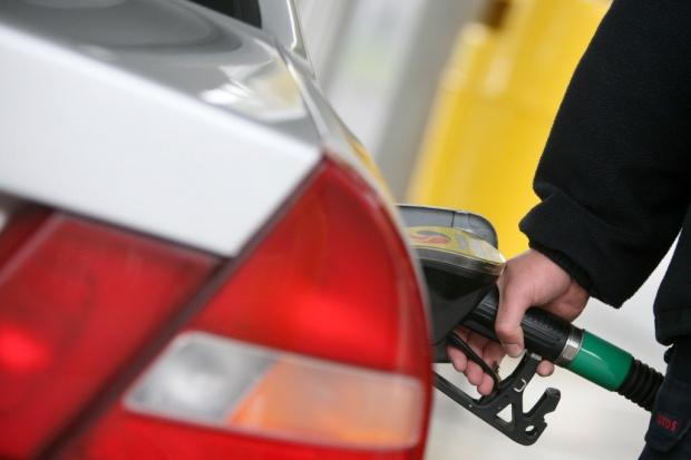 Budżet zarabia na akcyzie paliwowej, ale nie dzięki walce z szarą strefą