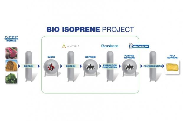 Michelin pracuje nad odnawialnym składnikiem gumy