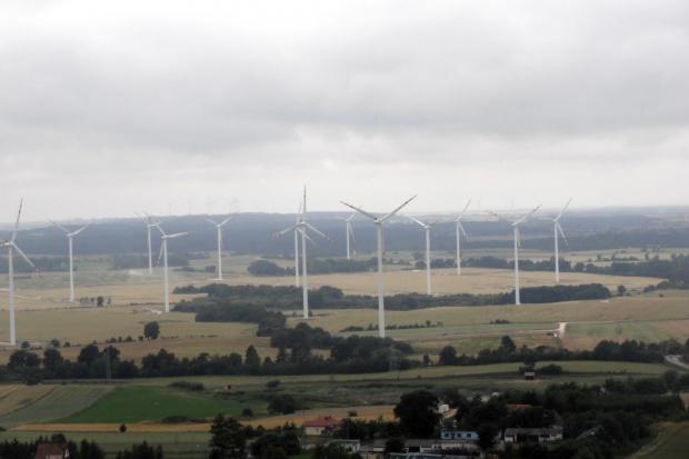 Tauron: Iberdrola i Aldesa chcą wybudować farmę wiatrową