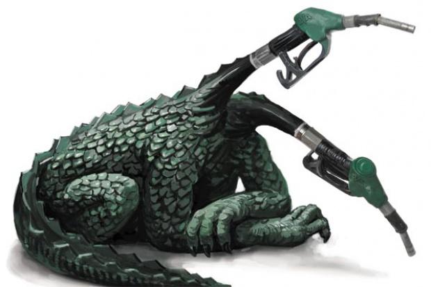 Mniej nieprawidłowości na stacjach paliw