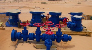Serinus trafił w Tunezji na ropę