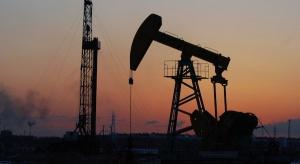 MAE: w 25 lat ropa przestanie być najważniejszym surowcem energetycznym
