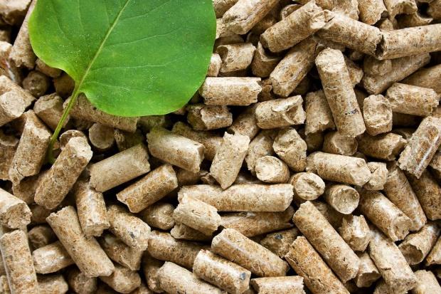 Fiten rozpoczął eksport pelletu do Włoch