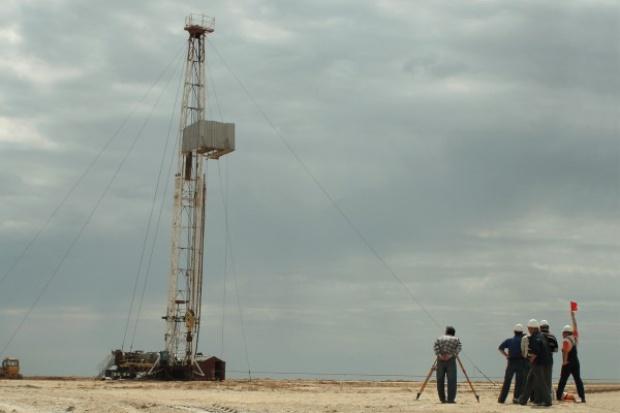Palomar szuka gazu koło Rawicza