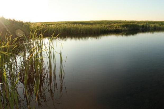 Poprawa jakości wód rzek i jezior może kosztować Polskę 23 mld zł
