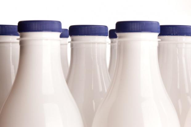 Plast-Box zwiększa sprzedaż dla branży mleczarskiej