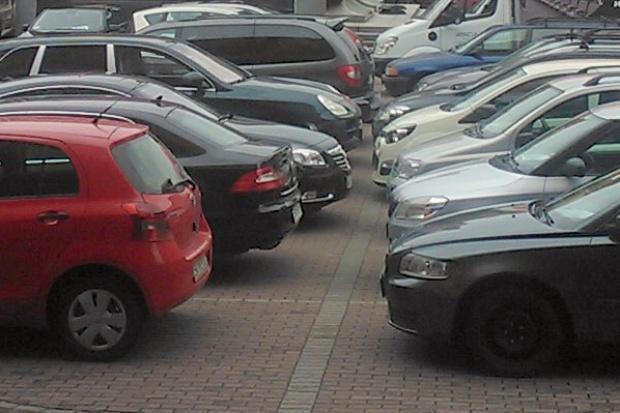 Małe firmy  przekonują się do wynajmu samochodów