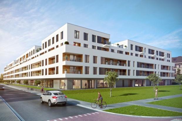Budimex pozyskał zlecenie od Bouygues za 51 mln zł