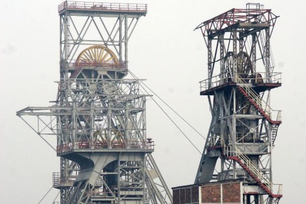 Trzcionka, szef Kadry: wycofać się z zamiaru likwidacji kopalń, rozpocząć rzetelny dialog