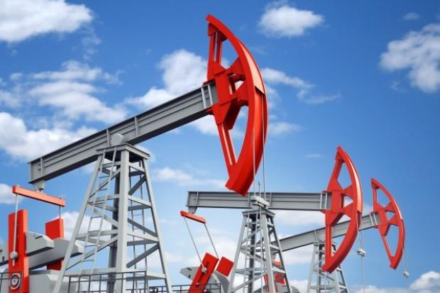 Coface: USA skorzystają na taniej ropie