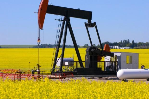 Biopaliwa: druga szansa?