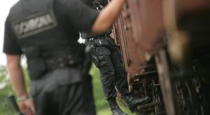 Branża ochrony w narodowym systemie bezpieczeństwa Polski