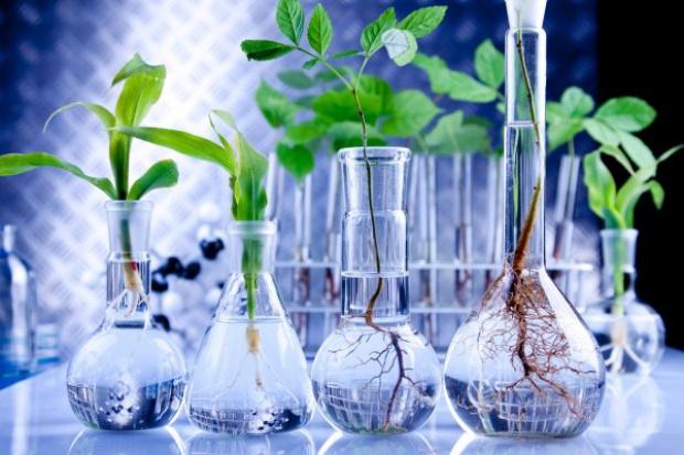 3,4 mld euro na projekty środowiskowe w ramach LIFE