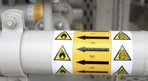 Polska może być gazowym centrum regionu