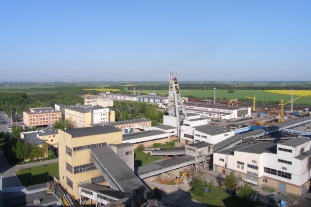 Powołano Radę Nadzorczą Lubelskiego Węgla Bogdanka
