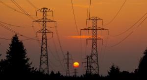 PTPiREE zabiega o ułatwienia w budowie sieci dystrybucyjnych