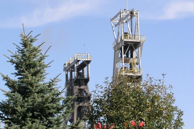 Związkowcy z Bogdanki pikietowali w obronie miejsc pracy