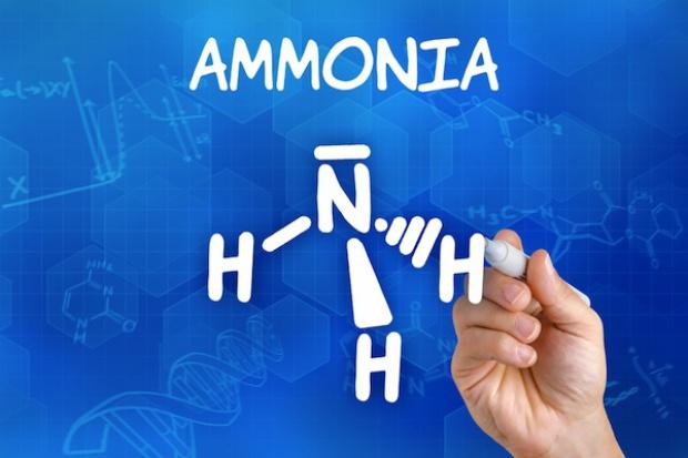 Koło Petersburga powstaje duża instalacja produkcji amoniaku