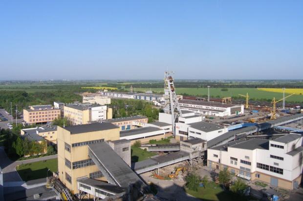 Enea chce przejąć kontrolę nad kopalnią Bogdanka