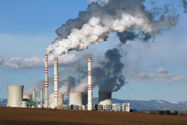 Duże zainteresowanie węglowymi aktywami Vattenfalla
