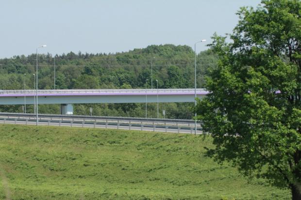 Warmińsko-mazurskie - drogowcy zasadzili 1050 młodych drzew