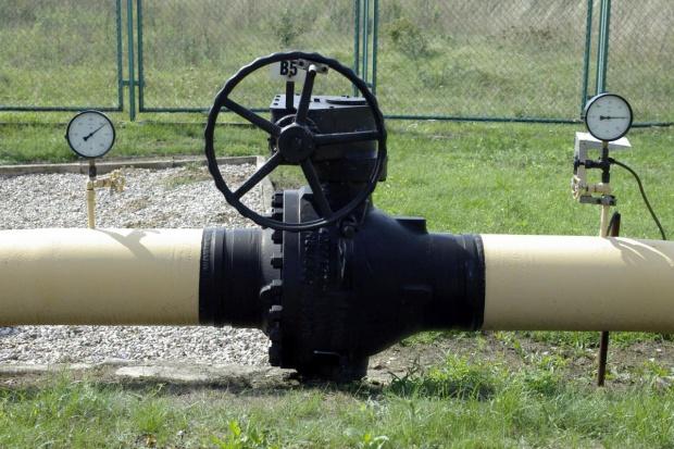 Coraz więcej firm korzysta z usługi przesyłu gazu