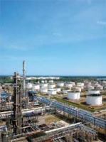 Nasz region stanie się naprawdę ciekawy dla koncernów z Zachodu (zaangażowanych teraz m. in. w inwestycje w sieci stacji paliw) dopiero po konsolidacji sektora naftowego. Wtedy, być może, po stronie inwestorów pojawi się zainteresowanie przejęciem już ukształtowanego panregionalnego gracza.