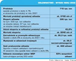 Tabela 1. Odlewnictwo - wyniki roku 2002