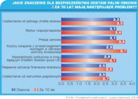 Tabela 2. Jakie znaczenie dla bezpieczeństwa dostaw paliw obecnie i za 10 lat mają następujące problemy?