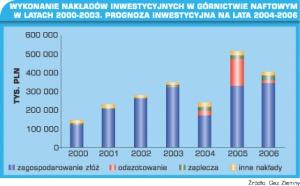 Tabela 1. Wykonanie nakładów inwestycyjnych w górnictwie naftowym w latach 2000-2003. Prognoza inwestycyjna na lata 2004-2006