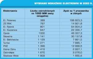 Tabela 1. Wybrane wskaźniki elektrowni w 2003 r.