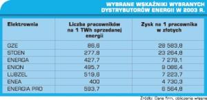 Tabela 2. Wybrane wskaźniki wybranych dystrybutorów energii w 2003 r.