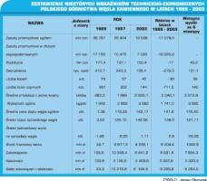 Zestawienie niektórych wskaźników techniczno-ekonomicznych polskiego górnictwa węgla kamiennego w latach 1989 - 2003