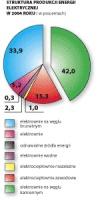 Wykres 1. Struktura produkcji energii elektrycznej w 2004 roku (w procentach)