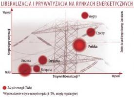 Liberalizacja i prywatyzacja na rynkach energetycznych