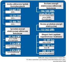 Podstawowe dane liczbowe charakteryzujące polską elektroenergetykę w 2004 roku.