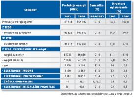 Struktura produkcji energii elektrycznej w 2004 roku.