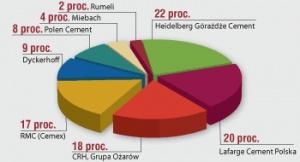 Udział w produkcji cementu w Polsce w 2003r.