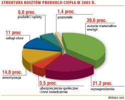 Struktura kosztów  produkcji ciepła w 2003 r.